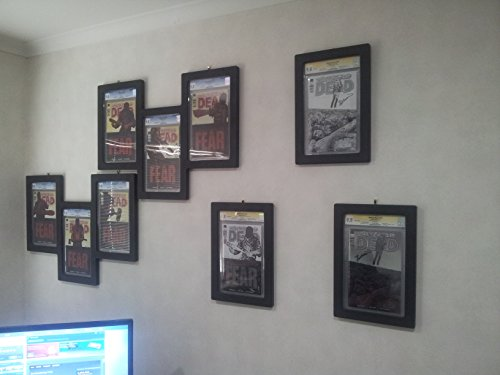 dual comic book display frame